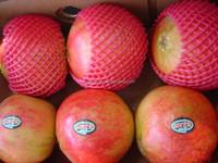 EPE fruit packaging foam sleeve net/wrap net/mesh