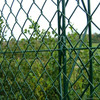 First Grade Green Plastic Chain Link Fence With Low Price