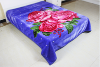 2015 new design 2 ply different kind of blankets for hotel