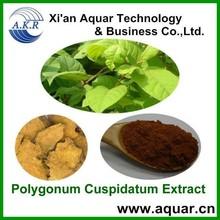 Chinese herb medicine 100% natural resveratrol