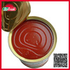 canned food list of import export seasoning canned tomato paste