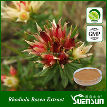 Health foods free sample rhodiola rosea powder extract