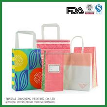 Well design kraft paper shopping bag with custom logo printed / retail paper bag for shopping
