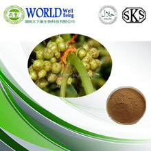 Chinese Dodder Seed Extract / Semen Cuscutae extract