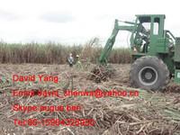 sugar cane loader for sale