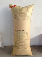 1.0x2.4M cargo air bag for container