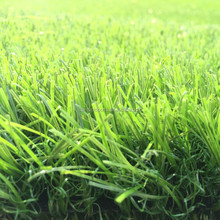 Straight and Curly Yarn Synthetic Grass Carpet for Home Garden