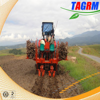 China professional manual hand seeder flat type 2 rows cassava planting machine 2AMSU