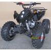 Adult 125cc ATV 125cc sports ATV 125cc racing ATV