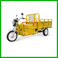 60V 1000W Red Chinese Electric Three Wheel Motorcycle