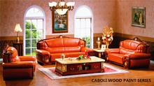 Caboli high-performance epoxy primer for wood coating
