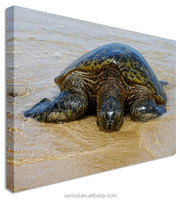 New style turtle canvas painting without frame, frameless canvas paintings
