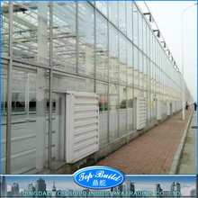 Top Build Certificated prefabricated green house with square tube/round ball
