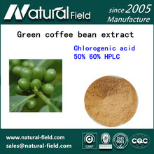 pure herbal quality products green coffee bean extract powder