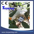 Máquina de embalaje de bolsa pirámide de té