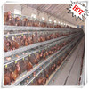 2015 hot selling good quality cheap price battary laying hens farm system bird chicken cages