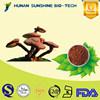Health Food Ganoderma lucidum / Reishi Mushroom Triterpene For Anti-cancer