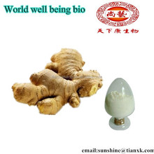 Gingerol 1% HPLC with Good Water Soluble Dry Ginger Root P.E. /Fresh Ginger Extract Root Powder Gingerols 5%