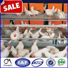 2015 Hot sale poultry farming equipment chicken cage / chicken breeding cage / design for broiler chicken