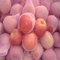 Chinese Fresh Fruit Shandong Red Fuji Apple Best Price