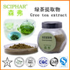 Green herbal products tea leaf extract Tea polyphenol