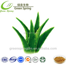 Aloe Vera Gel Spray Dried Powder/aloe vera extract powder/aloe vera extract/aloe vera gel freeze dried powder