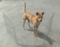 customized folding wire mesh fencing dog kennel