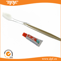 China Famous Brand Disposable Hotel Toothpaste