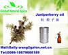100% Pure and Natural juniper berries essential oil / juniper berriy oil Cas:8012-91-7