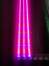 T8 plant grow led light tube blue color red color 6:1 7:2 3:1