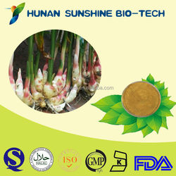 Health Food Powder Form And Solvent Extraction Type Brownish Yellow Ginger Extract Powder