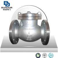 "ANSI 1/4"" Flange Type SS swing check valve Manufacturer"