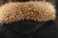 Женские пуховики, Куртки QL , s/4xl LW60912