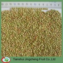 Dry Green Lentils