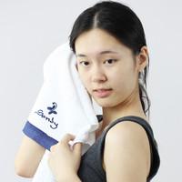 Sandy Luxury Hotel and Spa Salon 100% Cotton Ultra Soft Hand Towel