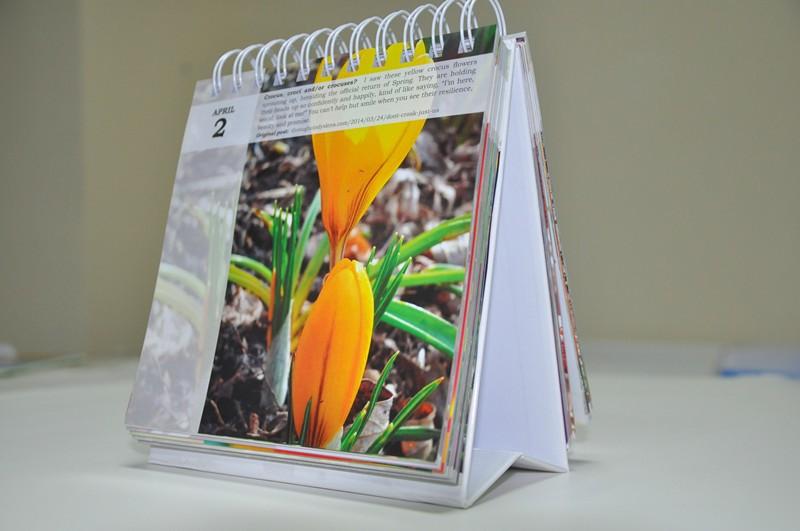 calendar printing,wall calendar printing,custom 365 daily wall calendar printing