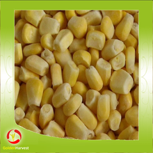 Frozen Chinese Food Vegetables Corn Corn Kernels