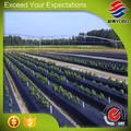 Biodegradável agricultura cobrir/agricultura tampa de plástico