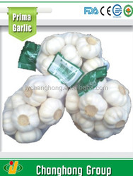 Hot sale 2015 high quality normal white garlic