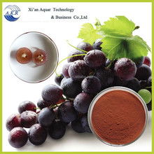 100% natural manufacturer supply Grape Seeds Extract Polyphenol and Proanthocyanidins 95% 98%