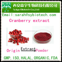 Cranberry extract/Cranberry juice powder/ Anthocyanines 25%