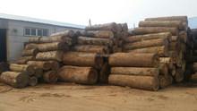 Supply lots of keruing veneers / gurjan veneers at flat price