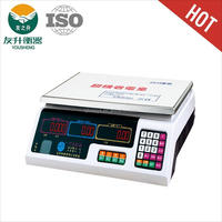 YS-208 electronic weight scale 6 / 15 30 /40 kg LCD Display ,White Light,AC / DC Available,accurate.
