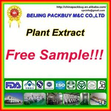 Top Quality From 10 Years experience manufacture saw palmetto extract