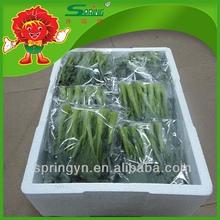 Hotsell chinos hortalizas frescas col china floración