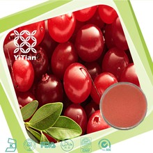 100% Natural Cranberry Extract Proanthocyanidin