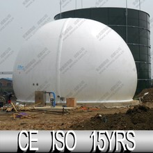 CE Certificated Biogas Equipment For Waste Management
