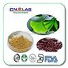 GMP certificated ginkgo biloba extract tablet(Flavones 24% Lactones 6%)