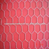 square chicken wire mesh