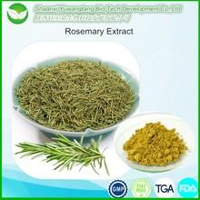 Natural herbal Rosemary Extract, Rosmarinic acid